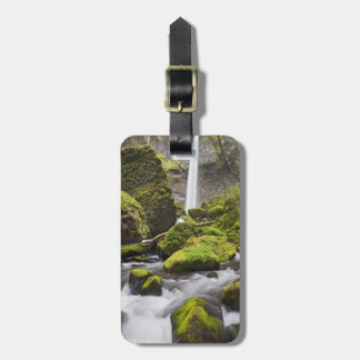 OR, Columbia River Gorge, Elowah Falls and Luggage Tag