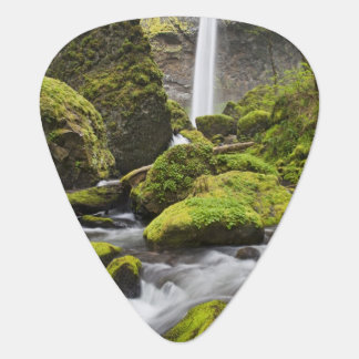 OR, Columbia River Gorge, Elowah Falls and Plectrum