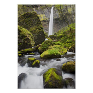 OR, Columbia River Gorge, Elowah Falls and Poster