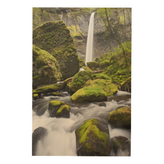 OR, Columbia River Gorge, Elowah Falls and Wood Print