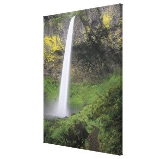 OR, Columbia River Gorge, Elowah Falls, McCord 2 Canvas Print