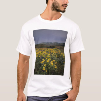 OR, Columbia River Gorge, Rowena Plateau, Tom T-Shirt