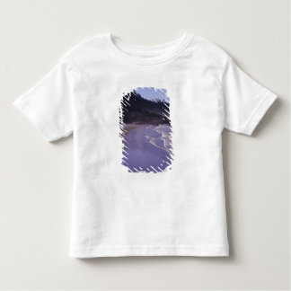 OR, Ecola SP, Indian Beach with morning fog Toddler T-Shirt