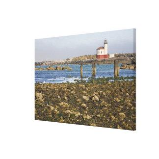 OR, Oregon Coast, Bandon, Coquille River Canvas Print