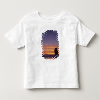 OR, Oregon Coast, Cannon Beach, seastacks at Tshirts