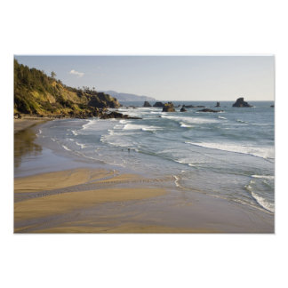 OR, Oregon Coast, Ecola State Park, Indian Art Photo