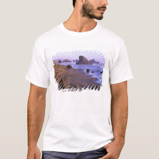 OR, Oregon Coast, Myers Creek, rock formations T-Shirt