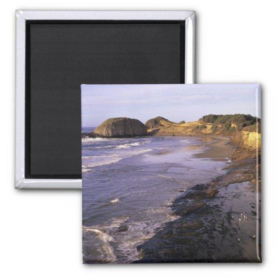 OR, Oregon Coast, Newport, shoreline at Seal Magnet