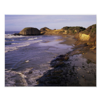 OR, Oregon Coast, Newport, shoreline at Seal Poster