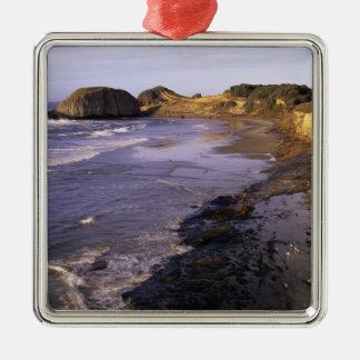 OR, Oregon Coast, Newport, shoreline at Seal Silver-Colored Square Decoration