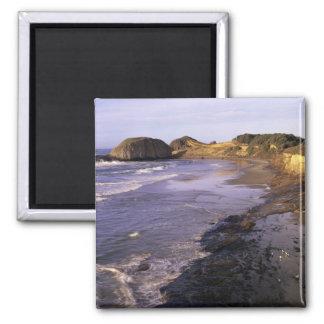 OR, Oregon Coast, Newport, shoreline at Seal Square Magnet