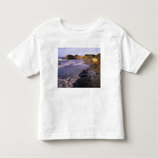 OR, Oregon Coast, Newport, shoreline at Seal Toddler T-Shirt