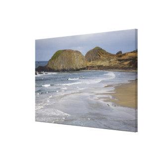 OR, Oregon Coast, Seal Rock State Park, Canvas Print