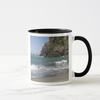 OR, Oregon Coast, Whaleshead Beach, South Mug