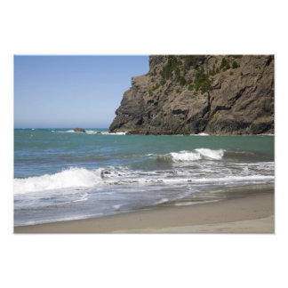 OR Oregon Coast Whaleshead Beach South Photograph