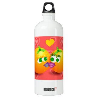 Orang Fun Fash SIGG Traveler 1.0L Water Bottle