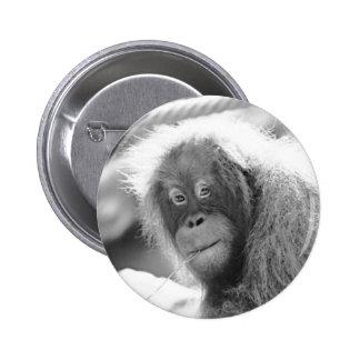 Orang Utan 215 BW 6 Cm Round Badge