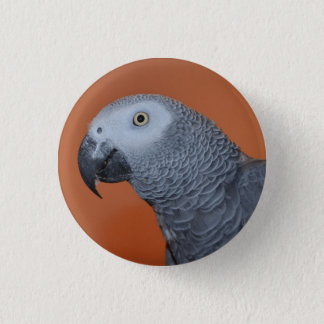 Orange African Grey Parrot Button / Badge