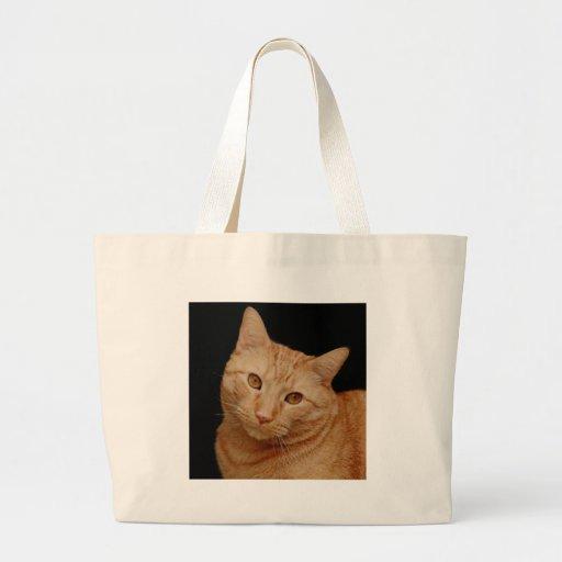 Orange American Shorthair Cat Canvas Bags