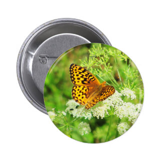 Orange and Black Butterfly on White Flowers Button