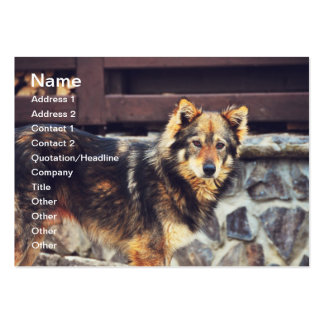 Orange and black dog business card template