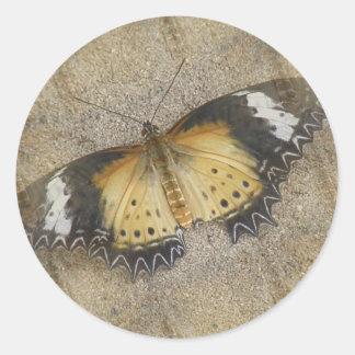 Orange and Black Moth Sticker