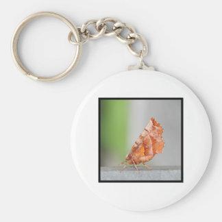 Orange and Brown Moth Key Chain