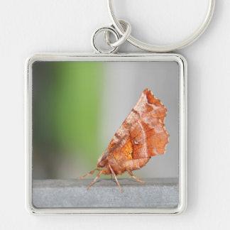 Orange and Brown Moth Keychain