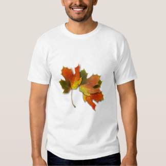 Orange And Golden  Autumn Leaves Tee Shirts