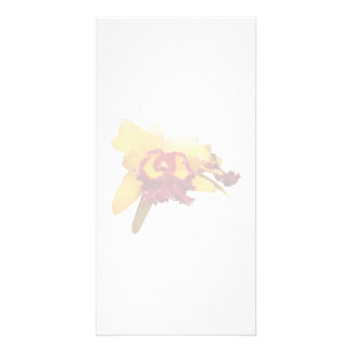 Orange and Magenta Orchid Photo Card Template