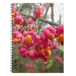Orange and Pink Wahoo Bush Berries Notebook