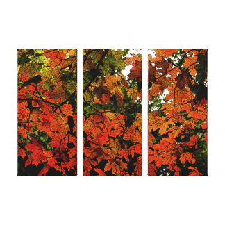 Orange and Red Autumn Leaves on Wrapped Canvas Canvas Print