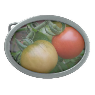 Orange and Red Tomatoes Belt Buckle