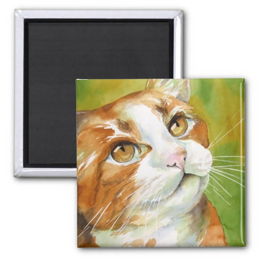 Orange and White Cat Magnet