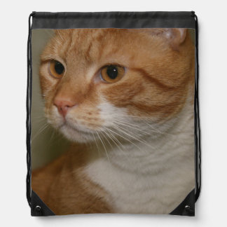 ORANGE AND WHITE TABBY CAT DRAWSTRING BACKPACK