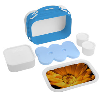 Orange and Yellow Daisy Lunchboxes