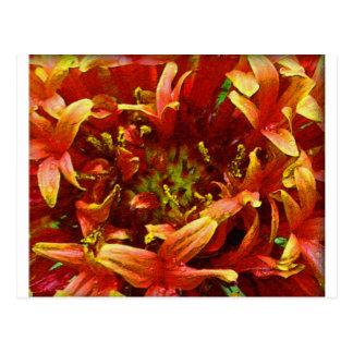 Orange and yellow flower gaillardia postcard