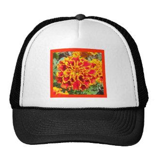 Orange and Yellow Marigold Mesh Hat