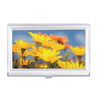 Orange And Yellow Namaqualand Daisies Business Card Holder