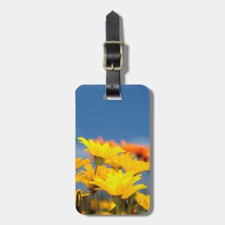 Orange And Yellow Namaqualand Daisies Luggage Tag