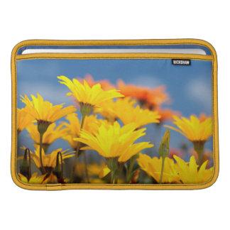 Orange And Yellow Namaqualand Daisies MacBook Sleeve