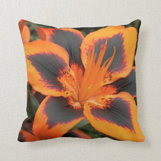Orange Asiatic Lily Floral Cushion