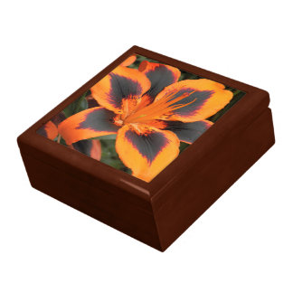 Orange Asiatic Lily Floral Gift Box