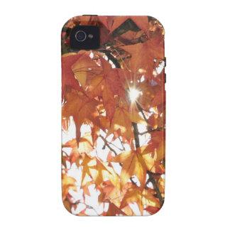 Orange autumn leafs with hard sun iPhone 4 cover