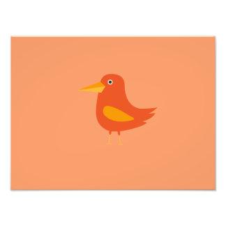 Orange Bird Photo Print