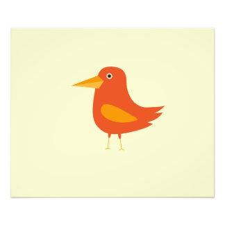 Orange Bird Photographic Print