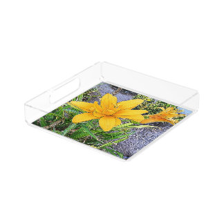 Orange Bloom and Bud Photograph Acrylic Tray