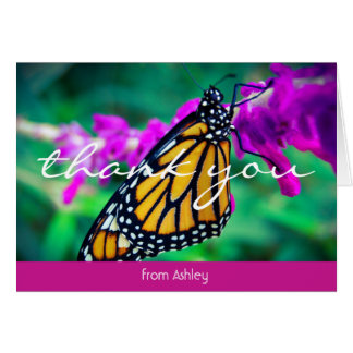 Orange butterfly close-up photo thank you card