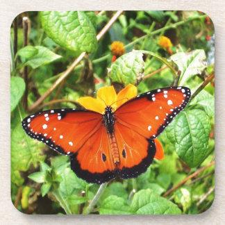 Orange Butterfly Coaster