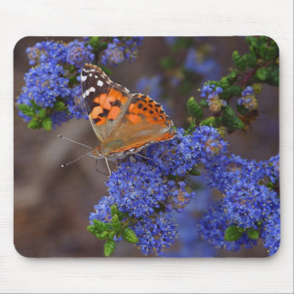 Orange Butterfly On Blue Flower Mouse Pads